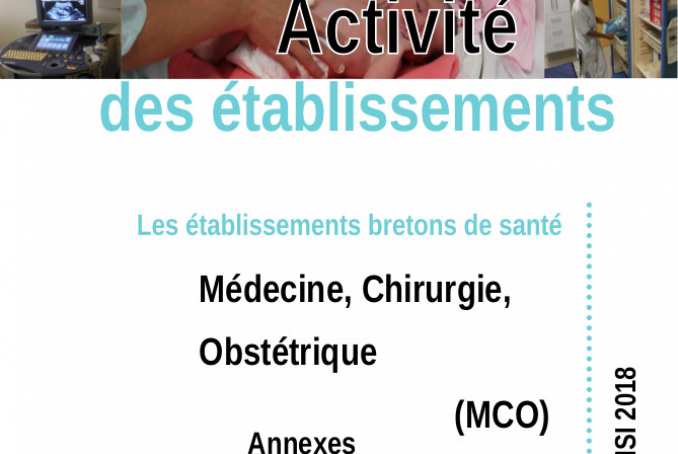activite_etablissement_annexes_MCO_2018